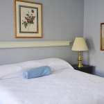 Hotel Coolidge bed and nightstand